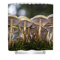 Mushroom Forest Shower Curtain by Sonya Lang