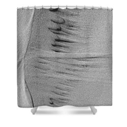 Music Of Sand Shower Curtain