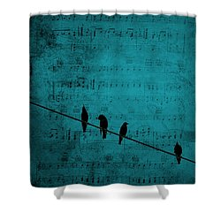 Music Soothes The Soul Shower Curtain by Andrea Kollo