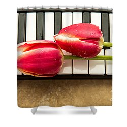 Musical Interlude Shower Curtain by Edward Fielding