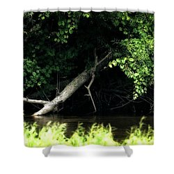 Muskegon River Heron Shower Curtain