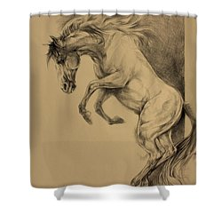 Mustang Rearing Shower Curtain by Derrick Higgins