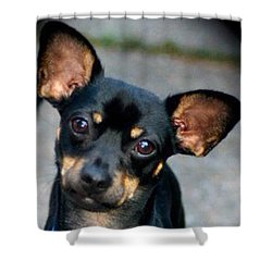 My Adorable Pepper Pup Shower Curtain