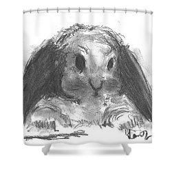 My Baby Bunny Shower Curtain