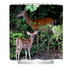 Shower Curtain featuring the photograph My Baby by Deena Stoddard