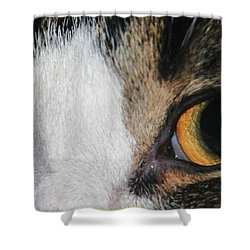 My Cat Is The Cat Of All Cats Shower Curtain by PainterArtist FIN