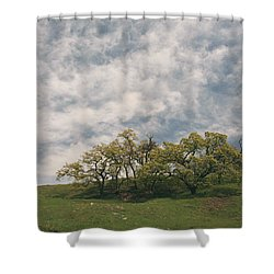 My Dreams Of Us Shower Curtain