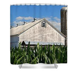 My Favorite Barn In Summer Shower Curtain