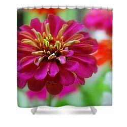 My Garden Shower Curtain