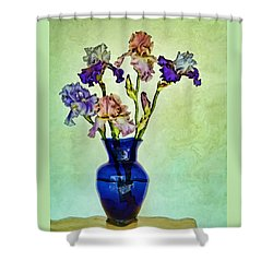 My Iris Vincent's Genius Shower Curtain