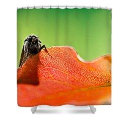 My Leaf Shower Curtain by Shane Holsclaw