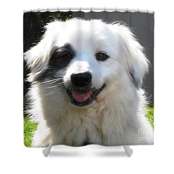 Shower Curtain featuring the photograph My Little Pirate by Judy Palkimas