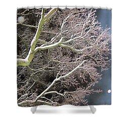 My Magic Tree Shower Curtain