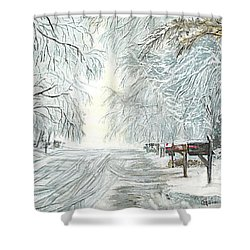 Shower Curtain featuring the painting My Slippery Street  by Carol Wisniewski