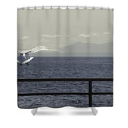 My Soul Is Full Of Longing Shower Curtain