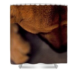 My Soul To Keep Shower Curtain