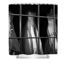 Shower Curtain featuring the photograph My Soulmate by Steven Macanka