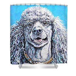 My Standard Of Excellence Shower Curtain