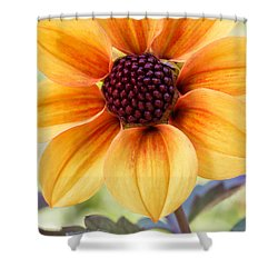 My Sunshine Shower Curtain by Heidi Smith
