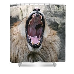 My What Big Teeth You Have Shower Curtain by Judy Whitton