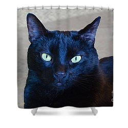 Mysterious Black Cat Shower Curtain by Luther Fine Art