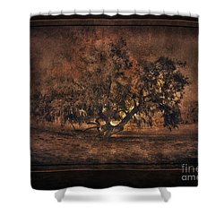 Mysterious Mesquite Shower Curtain