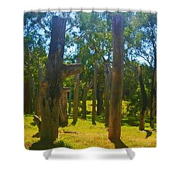 Shower Curtain featuring the photograph Mysterious Totems by Mark Blauhoefer