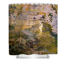 Shower Curtain featuring the painting Mystery 2 by Nancy Kane Chapman