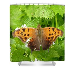 Shower Curtain featuring the photograph Mystery Lady by Lingfai Leung