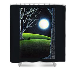 Mystery's Silence And Wonder's Patience Shower Curtain
