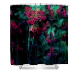 Mystic Dreamery Shower Curtain