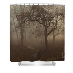 Mystic Forest 004 Shower Curtain by Robert ONeil