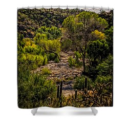 Mystic Wandering Shower Curtain by Mark Myhaver