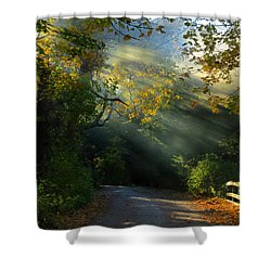 Mystical Shower Curtain by Dianne Cowen