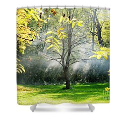 Shower Curtain featuring the photograph Mystical Parkland by Nina Silver