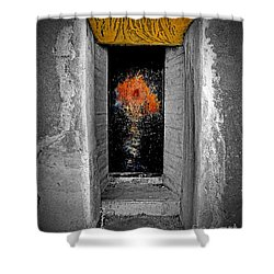 Mystify Shower Curtain by Lauren Leigh Hunter Fine Art Photography
