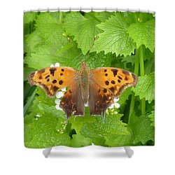 Shower Curtain featuring the photograph Mystique by Lingfai Leung