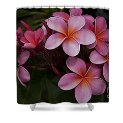 Na Lei Pua Melia O Wailua - Pink Tropical Plumeria Hawaii Shower Curtain