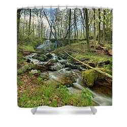Naked Creek Falls Shower Curtain