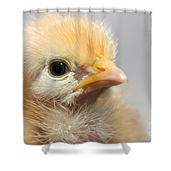Naked Neck Chick Shower Curtain