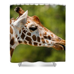 Nana Nana Boo Boo Shower Curtain