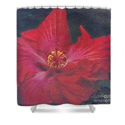 Nanakuli Floral Celebration Shower Curtain by Sharon Mau