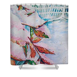 Nandina In Snow Shower Curtain