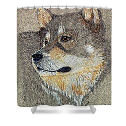 Shower Curtain featuring the drawing Nanook by Stephanie Grant
