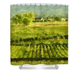 Napa Detail Shower Curtain by Paul Tagliamonte