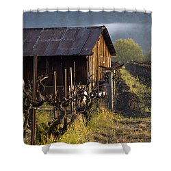 Napa Morning Shower Curtain