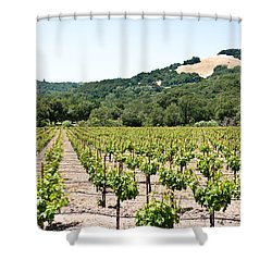 Napa Vineyard With Hills Shower Curtain