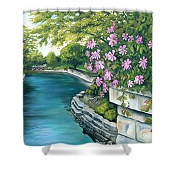 Shower Curtain featuring the painting Naperville Riverwalk by Debbie Hart