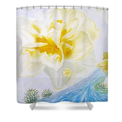 Narcissus Shower Curtain by Augusta Stylianou