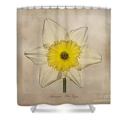 Narcissus Las Vegas Shower Curtain by John Edwards